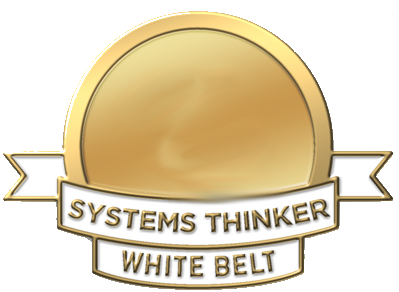 Systems Thinking certification white belt
